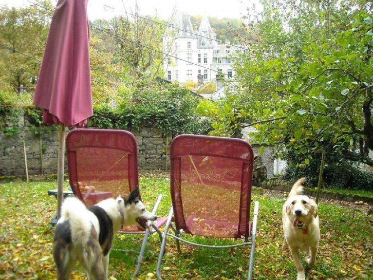 Romantische cottage Durbuy geweldig uitzicht omheinde tuin honden ok header afbeelding