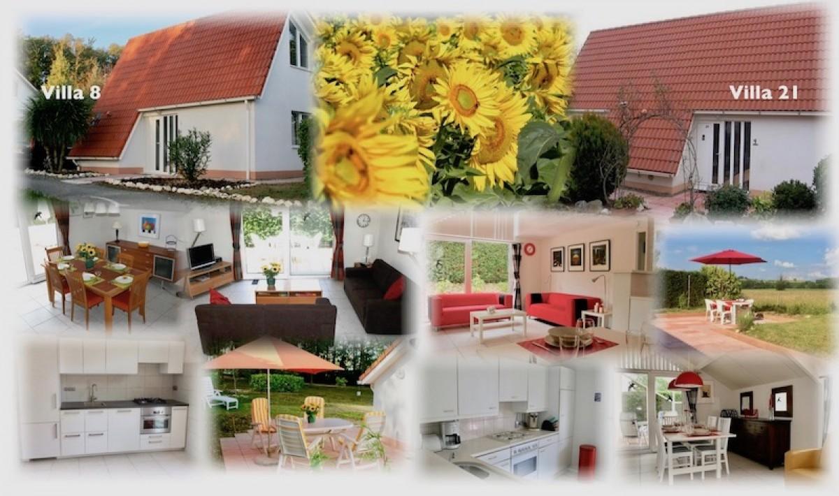 Luxe vakantievilla's te huur op vakantiepark header afbeelding