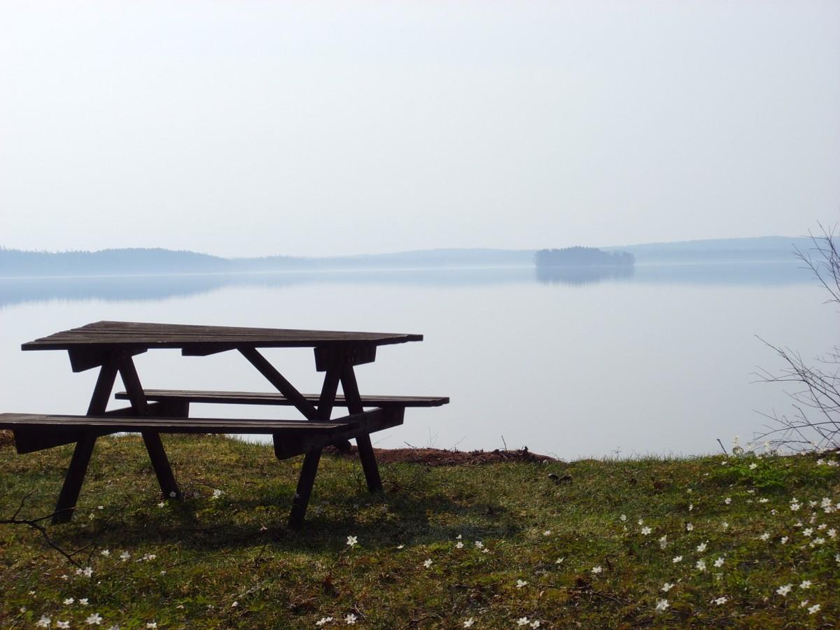 Gezellige familiecamping in Zuid-Zweden header afbeelding
