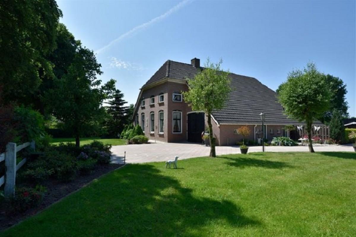 Appartementen en gastenverblijf (weekverhuur en B&B) in het bosrijke Schoonloo header afbeelding