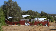 relax_and_chill_in_shade_on_our_field_land_algarve.JPG