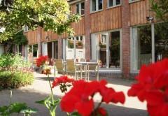 Courtyard + geraniums.JPG